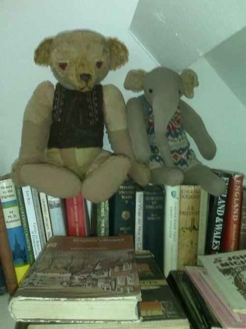 teddy bear e jumbo de john betjeman