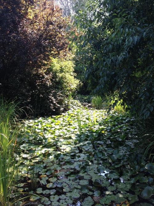 fundacao calouste gulbenkian pormenor dos jardins